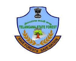 TELANGANA STATE FOREST